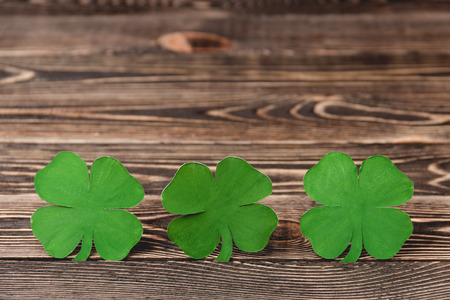 four leaf clovers: Four leaf clovers on brown wooden background