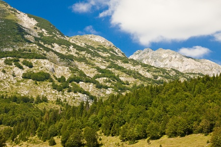 Beautiful mountain landscape. National park Durmitor, Montenegro Stock Photo