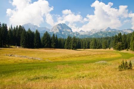 Beautiful mountain landscape  Black lake  National park Durmitor, Montenegro