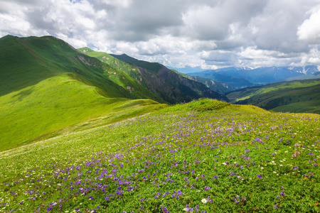 svaneti: Beautiful alpine meadows in the Caucasus mountains. Upper Svaneti. Georgia. Stock Photo
