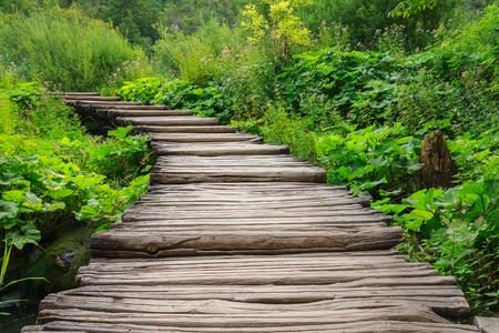 Wooden bridge footpath in Plitvice Lakes National Park . Croatia
