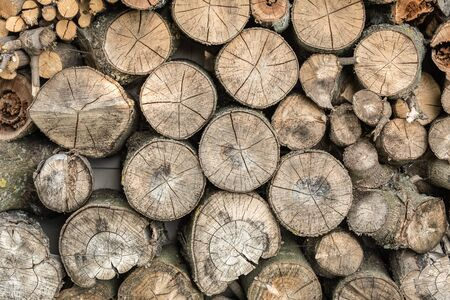 Wooden background closeup, pile of round firewood