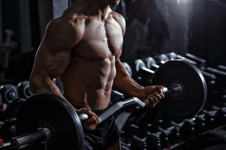 muscular build: Athlete muscular bodybuilder training biceps curl with dumbbell