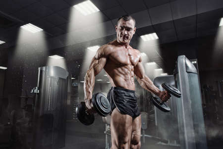 Weights: Handsome power athletic bodybuilder in training pumping up muscles with dumbbell in gym. Strong bodybuilder with perfect abs, shoulders, biceps, triceps and chest