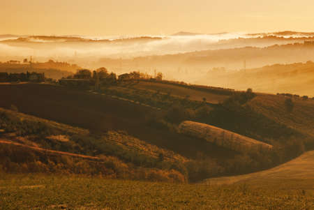 countryside with fog in the morning photo