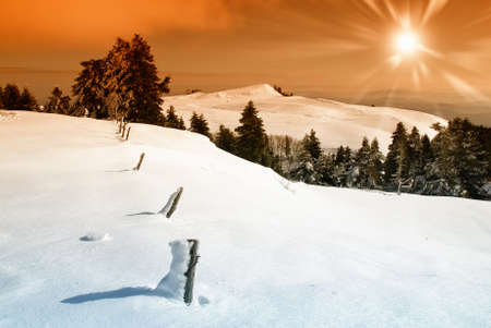 sunset on the snow covered plateau photo
