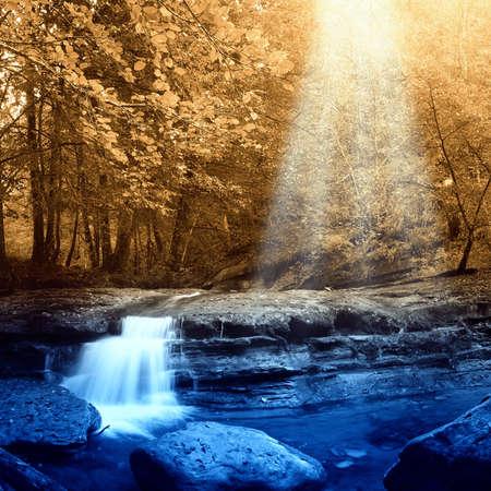 source d eau: rayons du soleil � travers les feuilles dans autmn