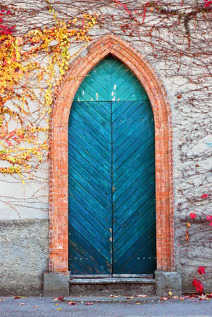 old gothic style door Stock Photo - 8890664