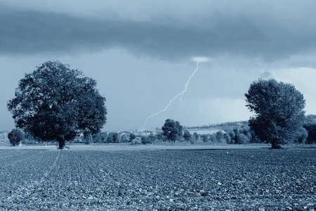 secular: secular oak under dark sky Stock Photo