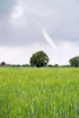 hurricane incoming on green field photo