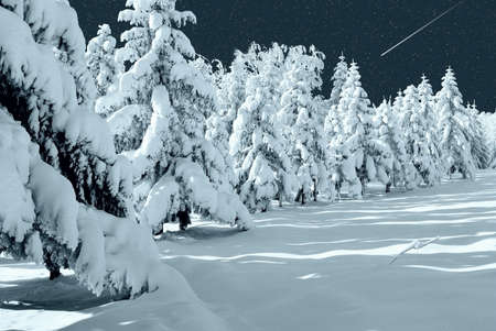 falling star: starry sky over the winter forest