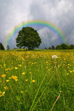 rainbow over  the raining sky photo