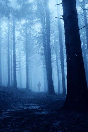 hombre solitario: hombre solitario en el bosque en la noche
