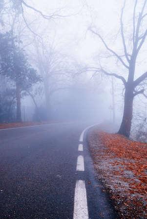 fog on mountain road in autumn photo