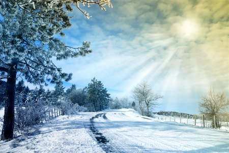 sun beam through the clouds with snowy landscape photo