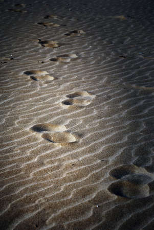 isolated footprint in the sand photo