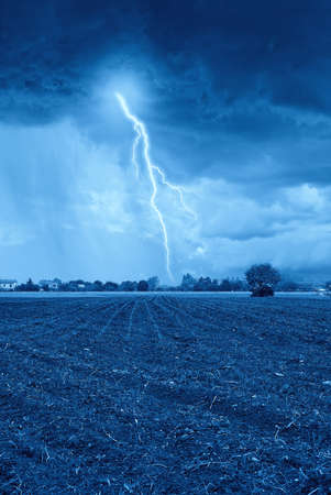 storm on the newly sprouted wheat field photo