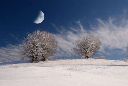 moon in the sky over snowy field photo