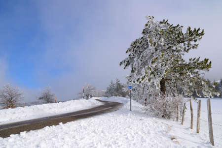 road on the hill with snow photo