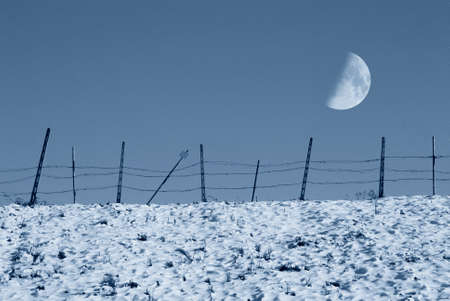 enclosure in winter with moon in the sky photo