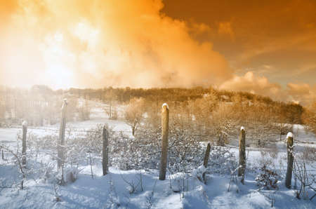 enclosure: Snowy field with enclosure at sunset in winter