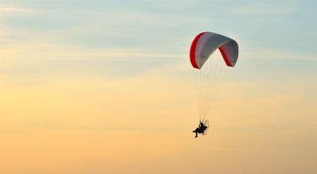 paraglider: Paraglider in flight  in summer at sunset
