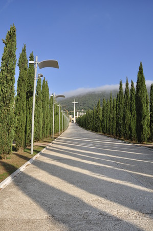 pathway between trees and street lamps leading to a white cross and the sanctuary for Padre Pio of Pietrelcina Banco de Imagens