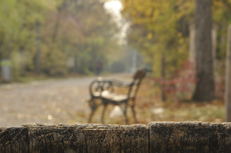 Wooden fence in the foreground and a great garden with alley and bench out of focus in the background Archivio Fotografico