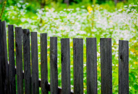 picket green: Wooden fence made of  planks on the nature background Stock Photo