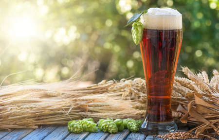large glass dark beer, kvass, malt, hops, barley ears standing on an old wooden table dyeing, natural background 版權商用圖片 - 63378415