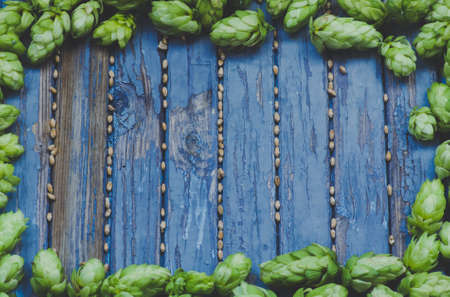 frame is of hops and malt wooden colored texture, , agricultural background, blue,toned,