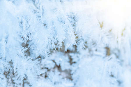 december sunrise: beautiful hoarfrost frozen winter ice and snow, nature background Stock Photo
