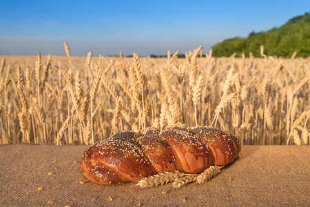 loaf of bread with sesame and poppy lying on table against the background of a wheat field and blue sky.
