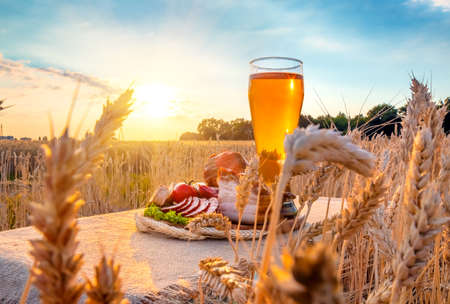 Beer, meat products. Smoked ham, sausage, bacon, cheese, vegetables lying on a table in a wheat field against the blue sky