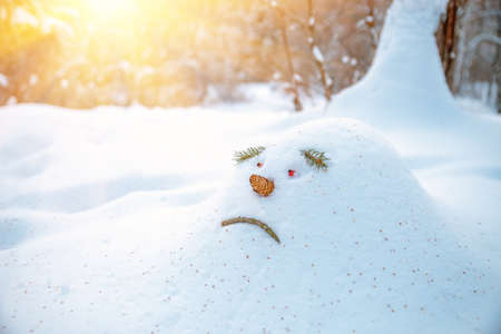 Sad snowdrift, a snowman, in anticipation of spring in the forest, is looking as warm rays are selectedup to him. Snowdrift in the shape of a sad face snowman is waiting for him to disappear in spring