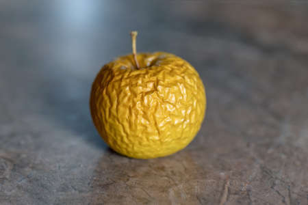 Wrinkled yellow old apple lies on the table top, closeup on neutral background.