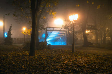 Autumn night park and lights when fog comes. Autumn background. Soft focus. Entrance to the passage, and metro. Standard-Bild