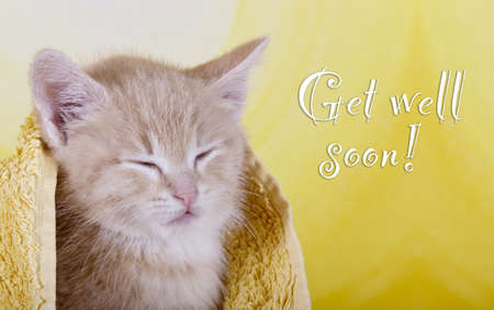 Get well soon Stock Photo - 14296724