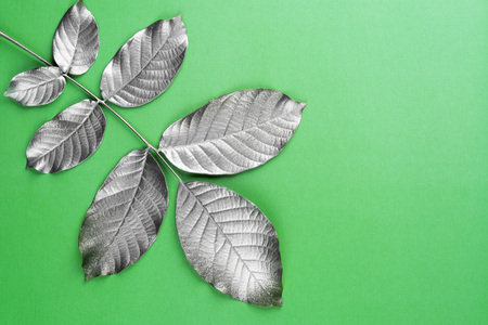 Silver painted leaves on the green abstract background.Nature concept. Imagens