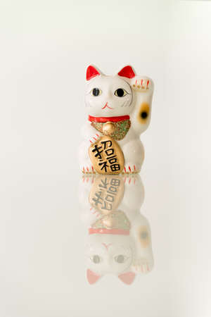 neko: Japanese beckoning cat (Maneki Neko) also means bring wealth to you while a right paw raised, currency sign for you to replace.