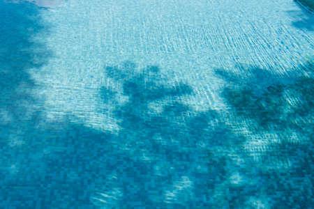 ceramic tiles: Trees shadow drop on ceramic tiles of swimming pool.