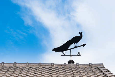 puntos cardinales: Weathervane with peacock above an arrow and the four cardinal points North East West South Foto de archivo