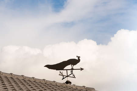 north arrow: Weathervane with peacock above an arrow and the four cardinal points North East West South Stock Photo