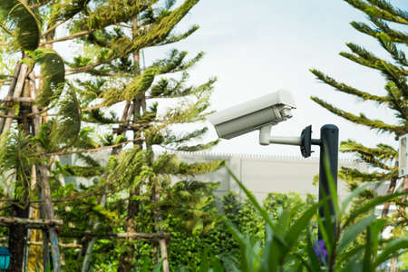 paranoia: CCTV security camera installed in the park.
