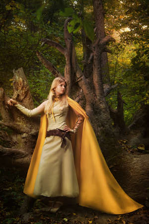 Blond girl in a magic forest Stock Photo - 12322672