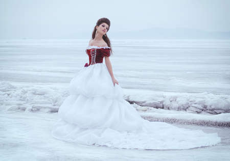 winter wedding: Beautiful brunette in a dress