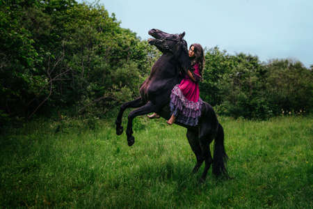 pet  animal: Beautiful woman on a horse dressed in long violet dress Stock Photo