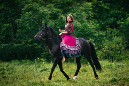 horses in field: Beautiful woman on a horse dressed in long violet dress Stock Photo