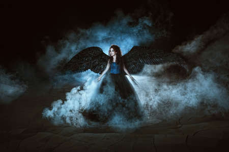 black smoke: Pretty girl-demon with black wings behind her back