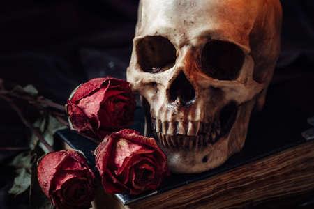 Todavía vida con el cráneo humano, rosas rojas y libro viejo